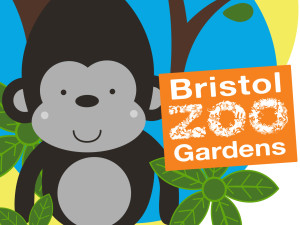 Bristol Zoo Apparel Collection in Bristol, England